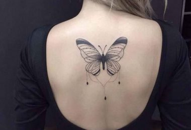 Estilo de aves, mariposas, o alas